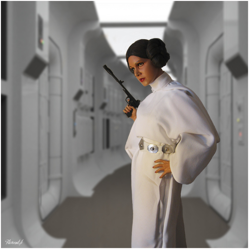 collection n°311: Darth Han Leia10