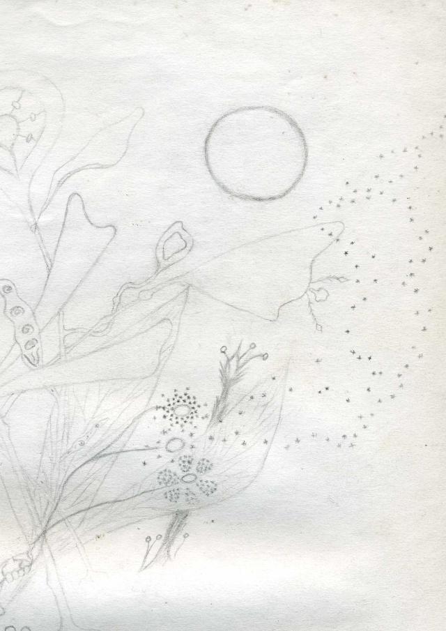 Mes dessins .... inachevés / Autres - Nuage Img07212