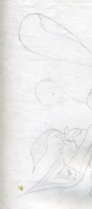 Mes dessins .... inachevés / Autres - Nuage Img07311