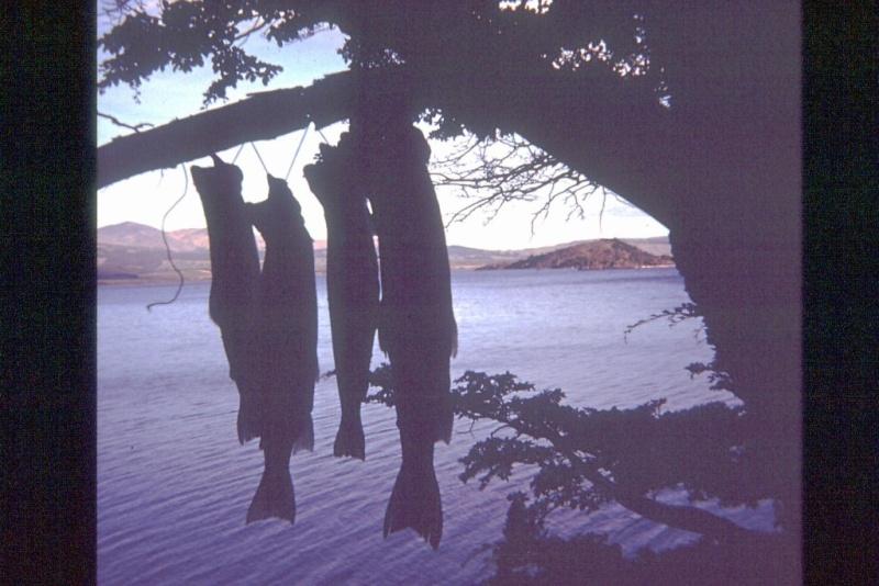 Lago Fontana lago La Plata 0411110
