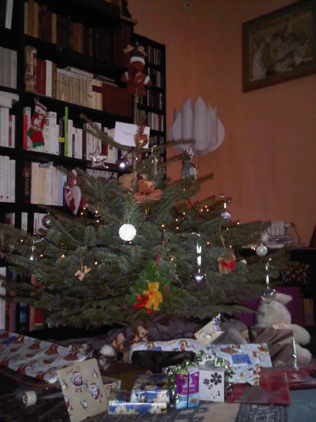 Vos décorations de Noël Sapin_10