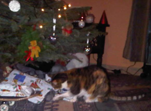 Vos décorations de Noël Zibouj10