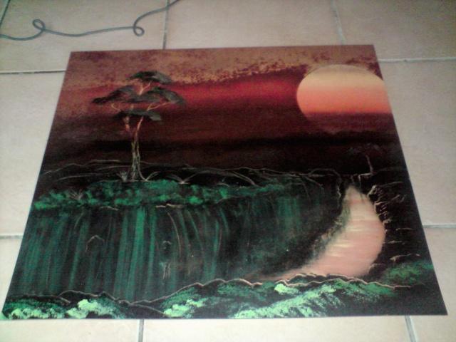 voici les dernier tableaux de coolzen 33!! - Page 2 P3103111