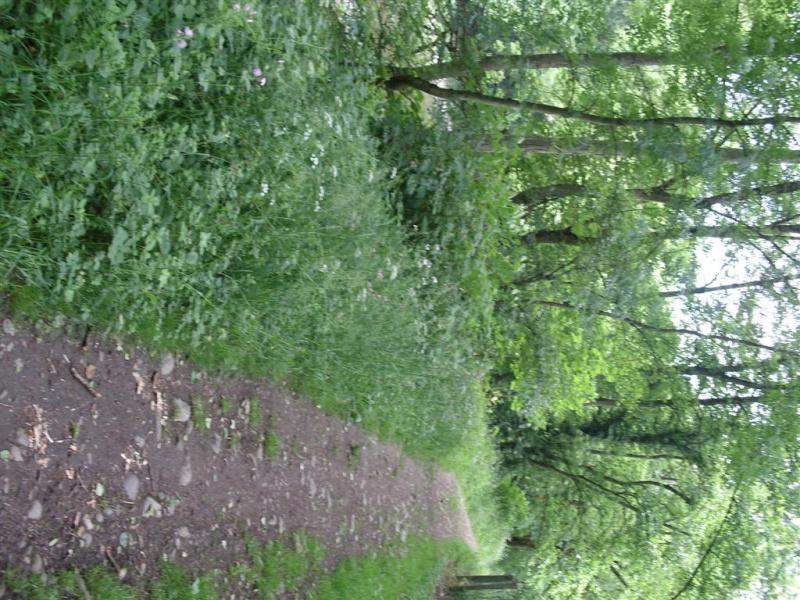 RAVeL 5 Ourthe Liege - Durbuy - Itinéraire N°7 - Sur la route des Ardennes Entre_14