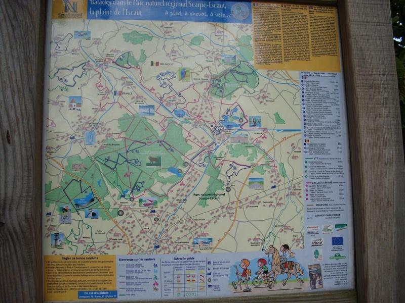 Forêt de Raisme Saint Amand Wallers Raimes13