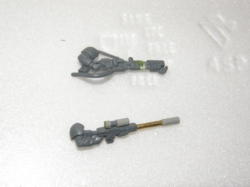 veterans gardes imperiaux P2230016