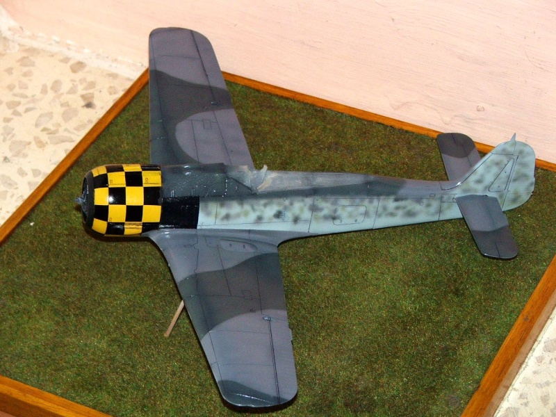 1/32nd Focke Wulf Fw190 A5 2_00110