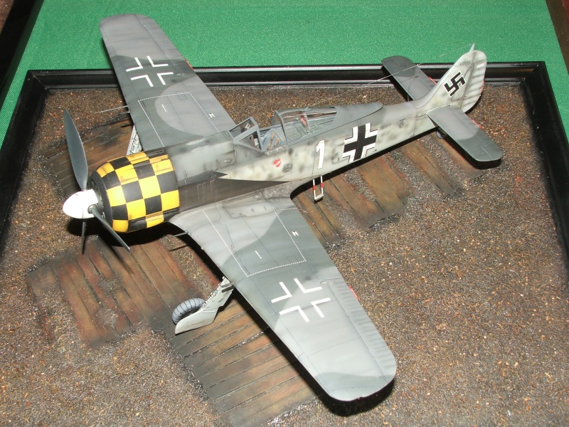 1/32nd Focke Wulf Fw190 A5 Dscf7410