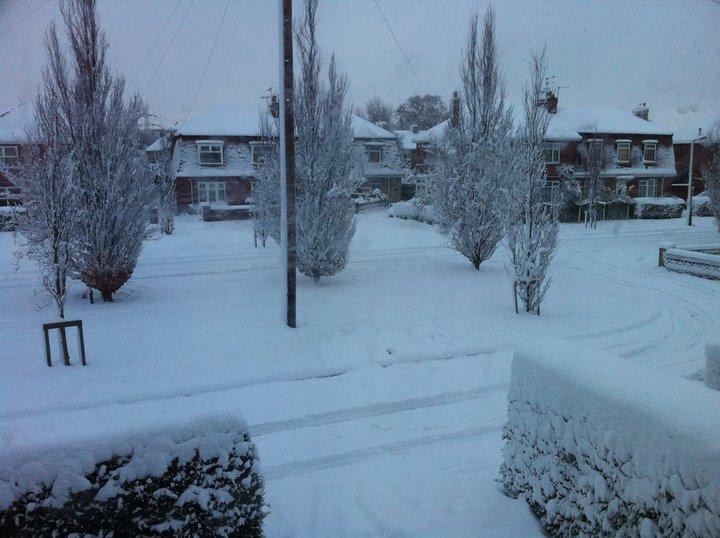 Snow. Snow110