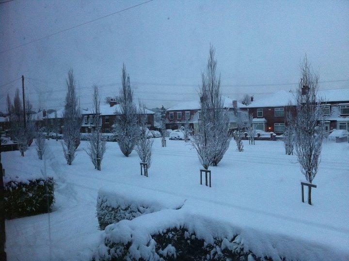 Snow. Snow210