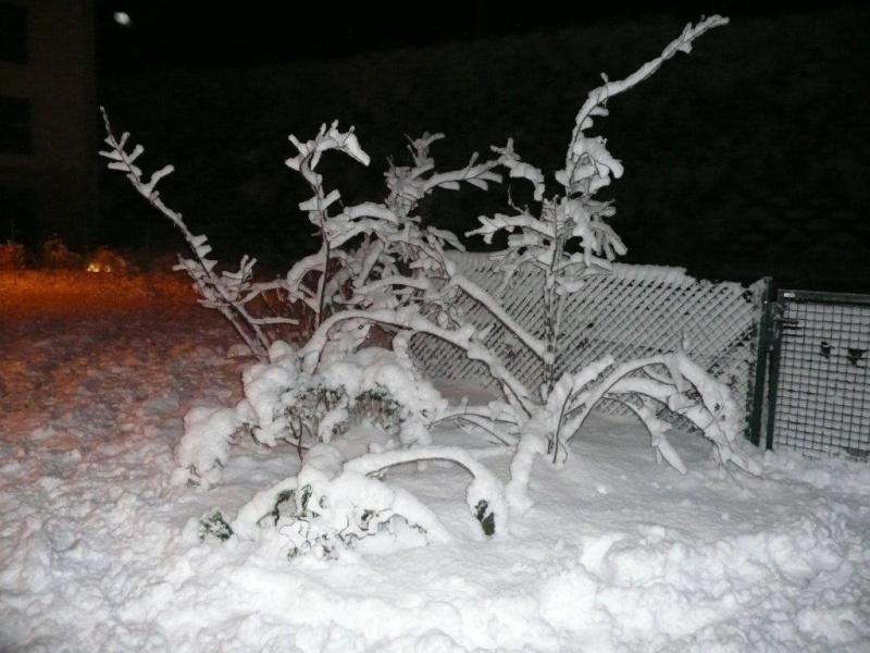 QUelques photos de notre station de ski préferé. P1050716