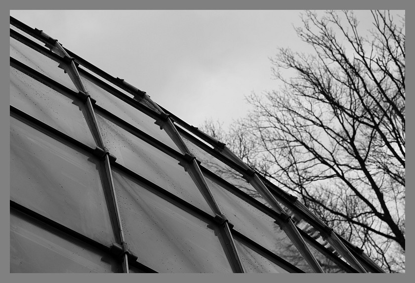 Comptoir Forestier Img_4511