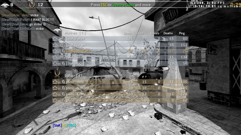 [SlaK] vs pAnic 29/1 -2010 Shot0010
