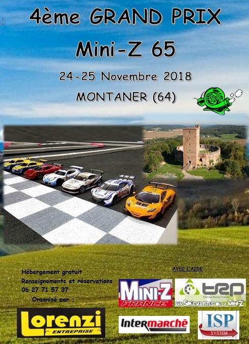 25 Novembre 4éme  Grand Prix du Mini-z 65 Affich11