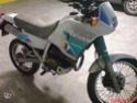 Les 250 cc (et aussi les 350/400) 250_nx10