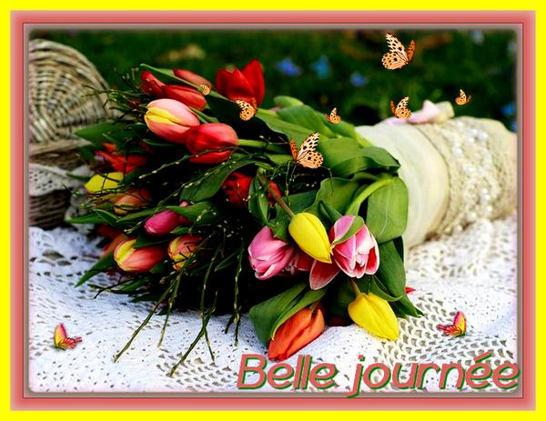 Bonjour, bonsoir..... - Page 5 11050410
