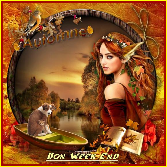 Bonjour, bonsoir..... - Page 22 11454310