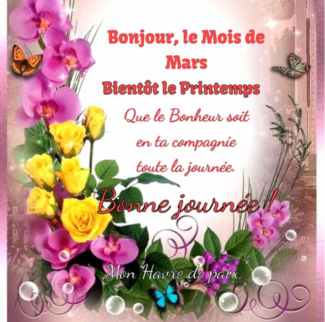 Bonjour, bonsoir..... 12633511