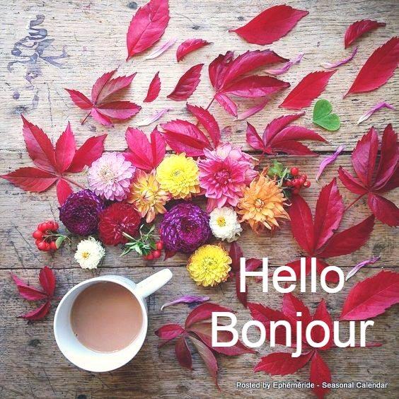 Bonjour, bonsoir..... - Page 22 33171710