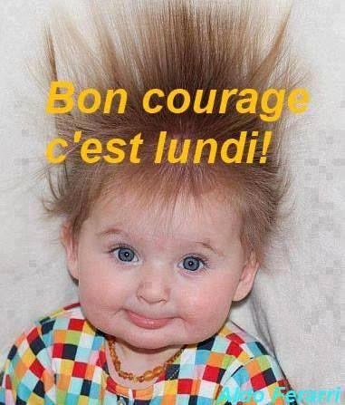 Bonjour, bonsoir..... - Page 22 8bb2f310