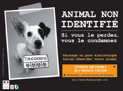 L'identification de votre animal Identi10