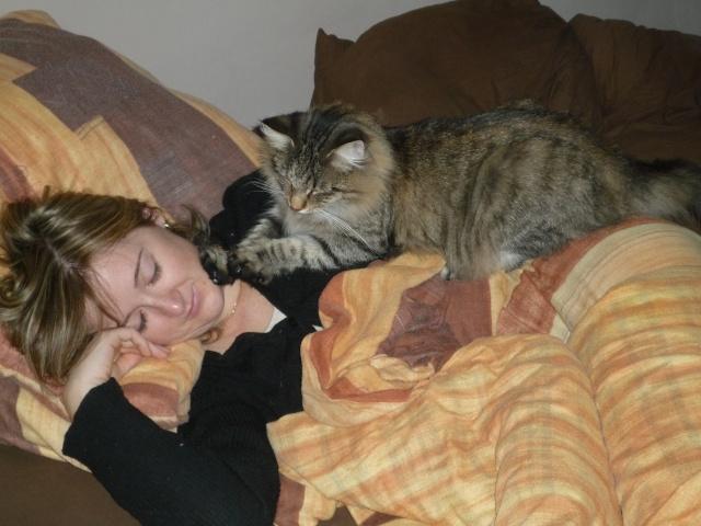 Spécials Photos : Avant/Après de nos chats - Page 5 P1000815