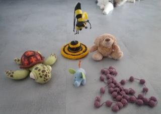 Les jouets de nos chats P1020815