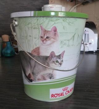 Les jouets de nos chats P1020821
