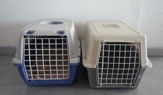 Les jouets de nos chats P1020822