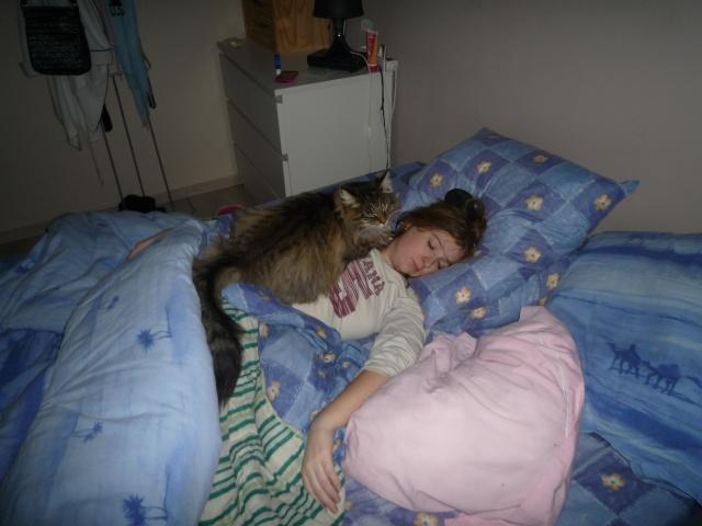 Spécials Photos : Avant/Après de nos chats - Page 5 P1040335
