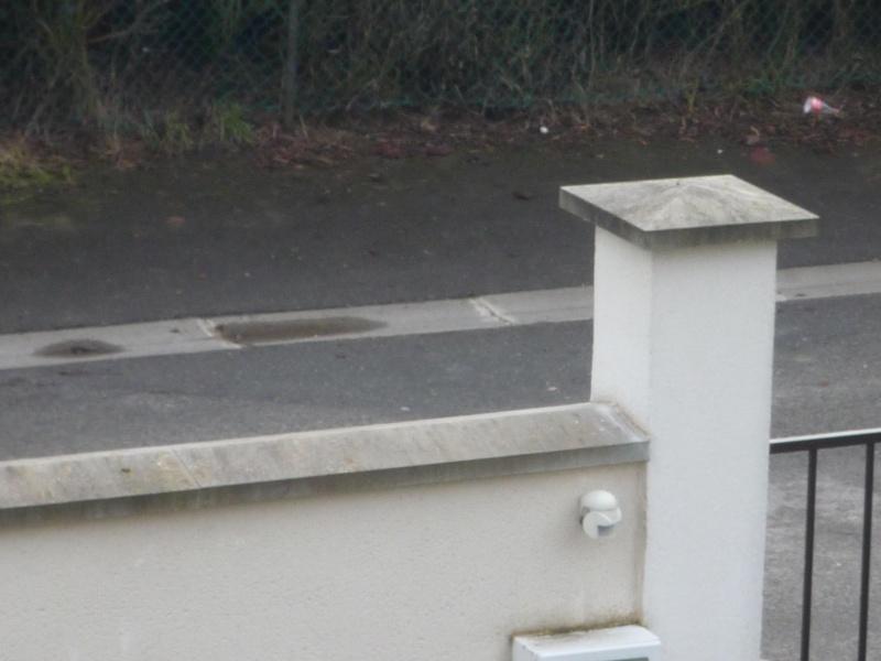 Mur extérieur sans chapeau. Comment faire ? P1020216