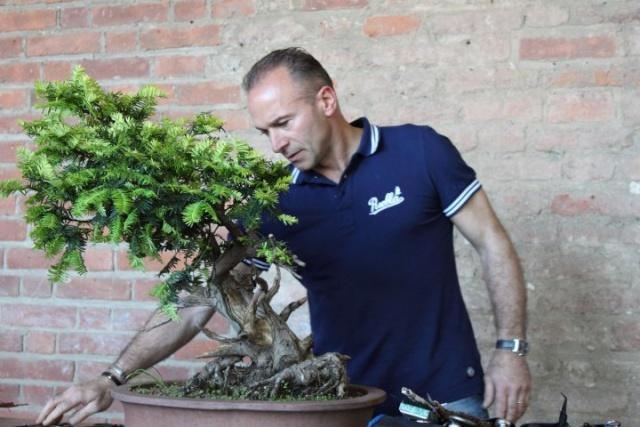 Intervista a Donato Danisi 00110