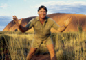 STEVE IRWIN  - The Crocodile Hunter ! Irwin_10