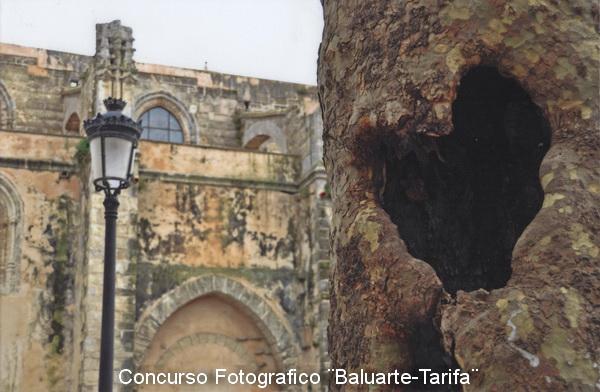 I Concurso Fotografico ¨BALUARTE-Tarifa¨ 2_prem10