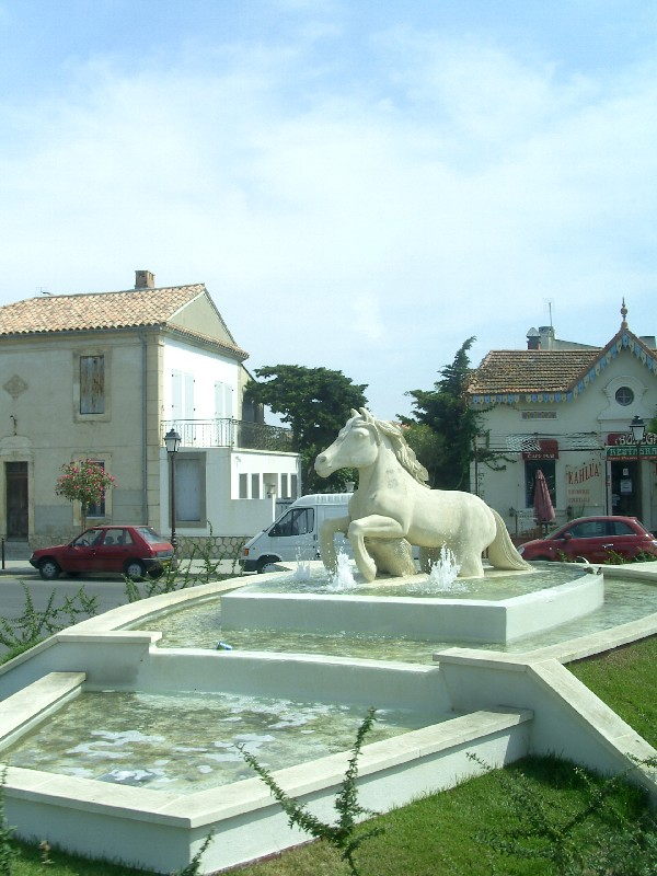 Taureaux et chevaux de Camargue 15319110
