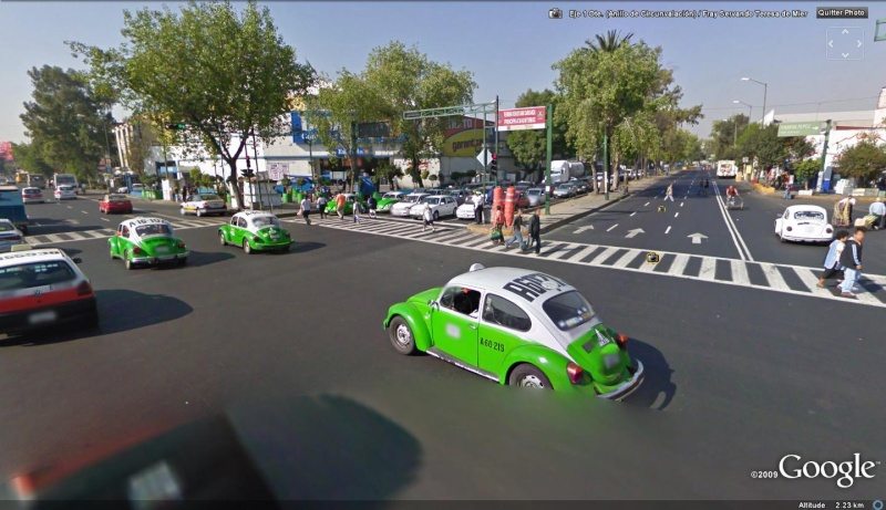 STREET VIEW : Les coccinelles Na5_6_10