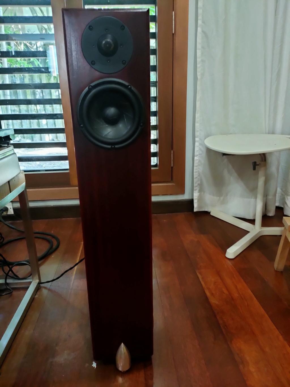 Totem Hawk loudspeakers (Sold) Img20226