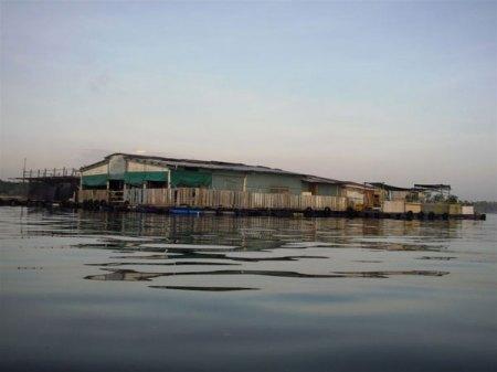 18/08/09 - Pasir Ris Beach Kelong10