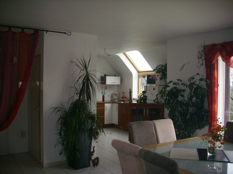 quelle couleur de peinture ou papier peint pour salle et sal Photo_35