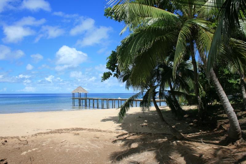 Mayotte... l'île au lagon Img_3015