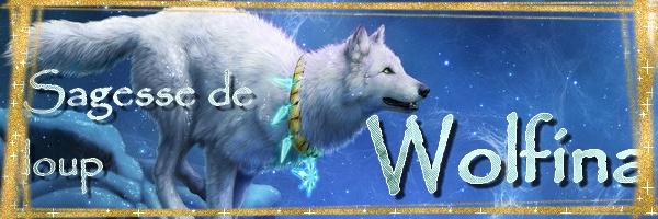 Feli's Créa !! Wolfys10