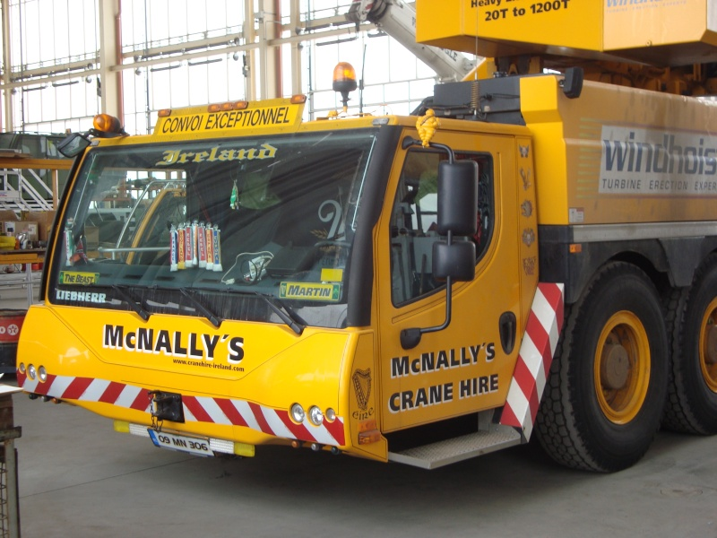 Les grues de Mc NALLY's (Irelande) Dsc00918