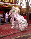 Le nouvel an chinois Img11316