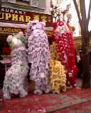 Le nouvel an chinois Img11411