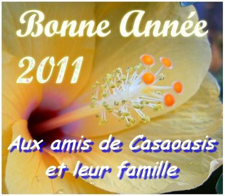 DOSSIER SPÉCIAL NOEL ET 2011 Bonne_10