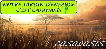 CASAOASIS