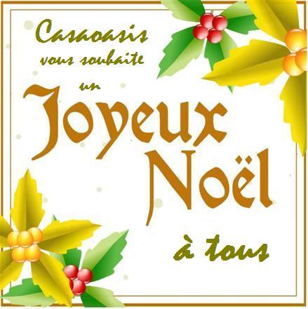 DOSSIER SPÉCIAL NOEL ET 2011 Joyeux10
