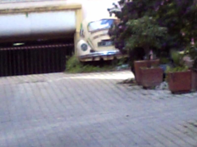 Auto Abbandonate Maggab10