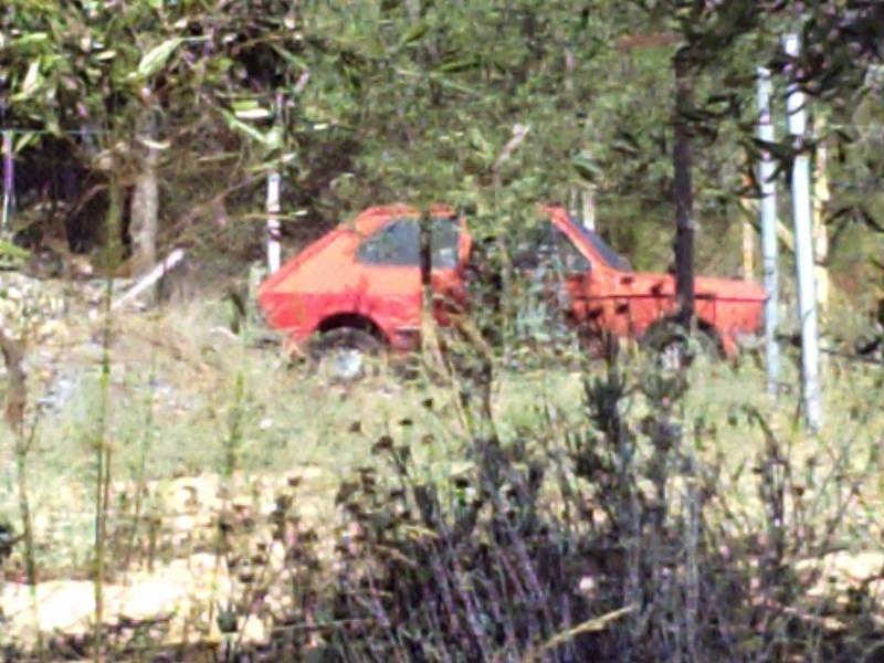 Auto Abbandonate - Pagina 2 Pict0091