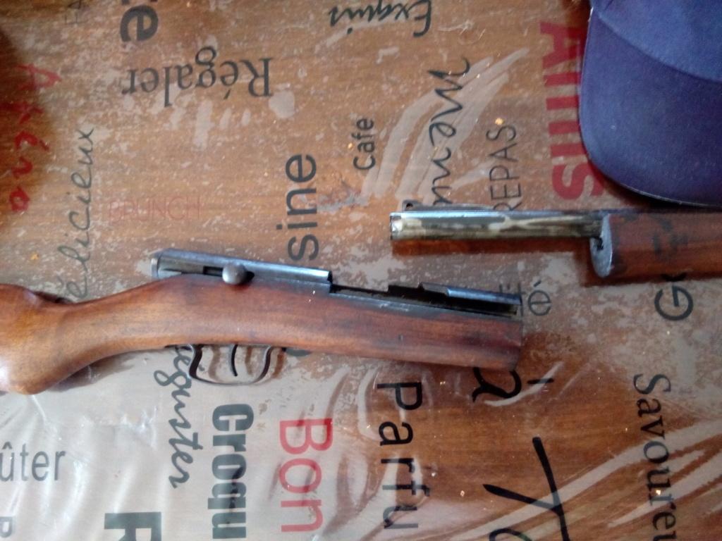 petite carabine,mais quoi? 15298310